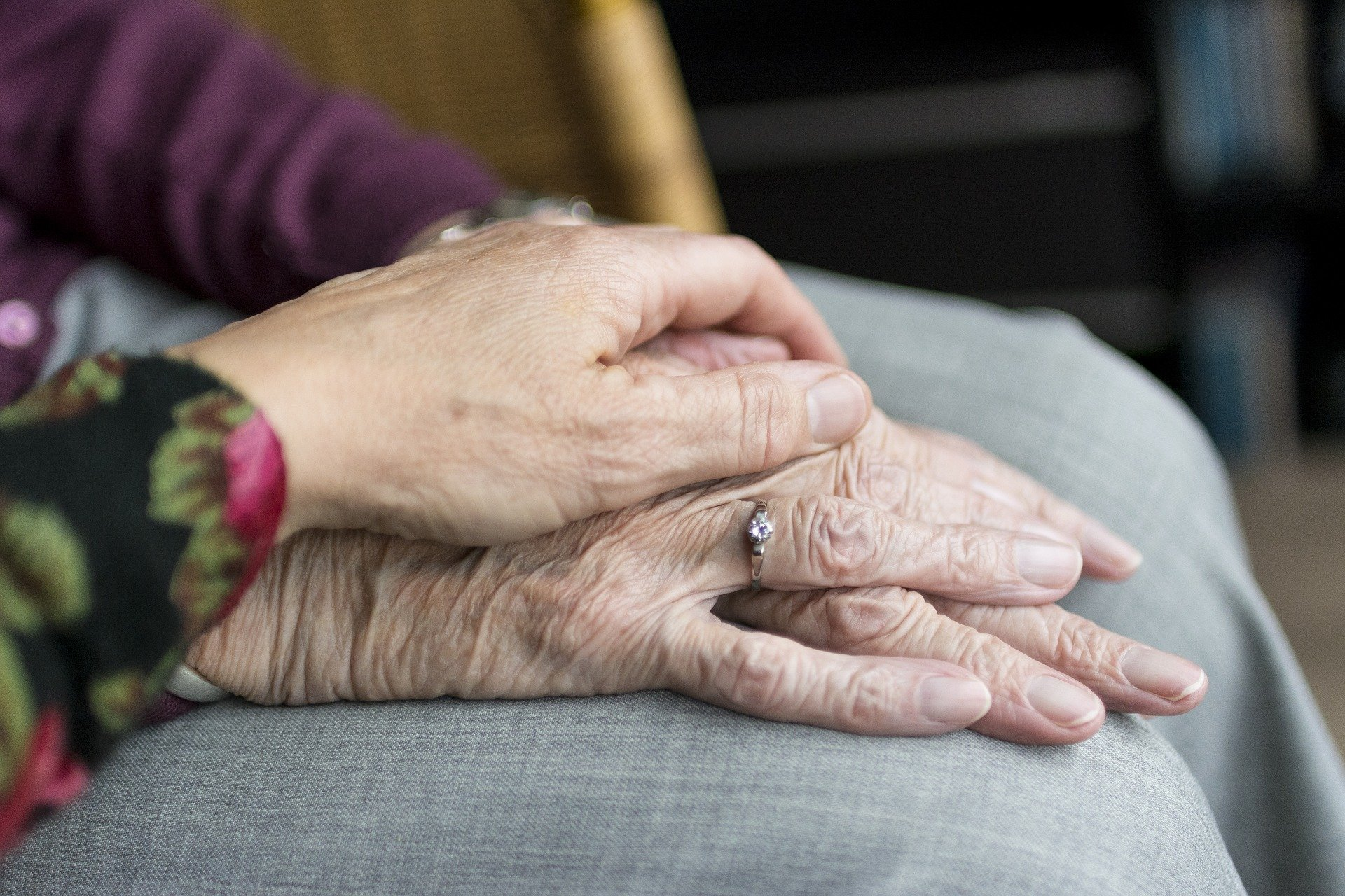 featured image for UMaine Center on Aging Partners with The Cedars Assisted Living Center