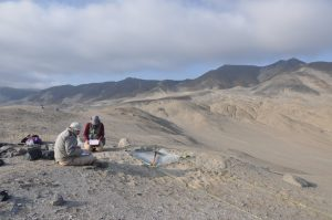 Dan Sandweiss and Emily Blackwood at the Ostra Collecting Site in Peru.