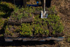 farming wedges