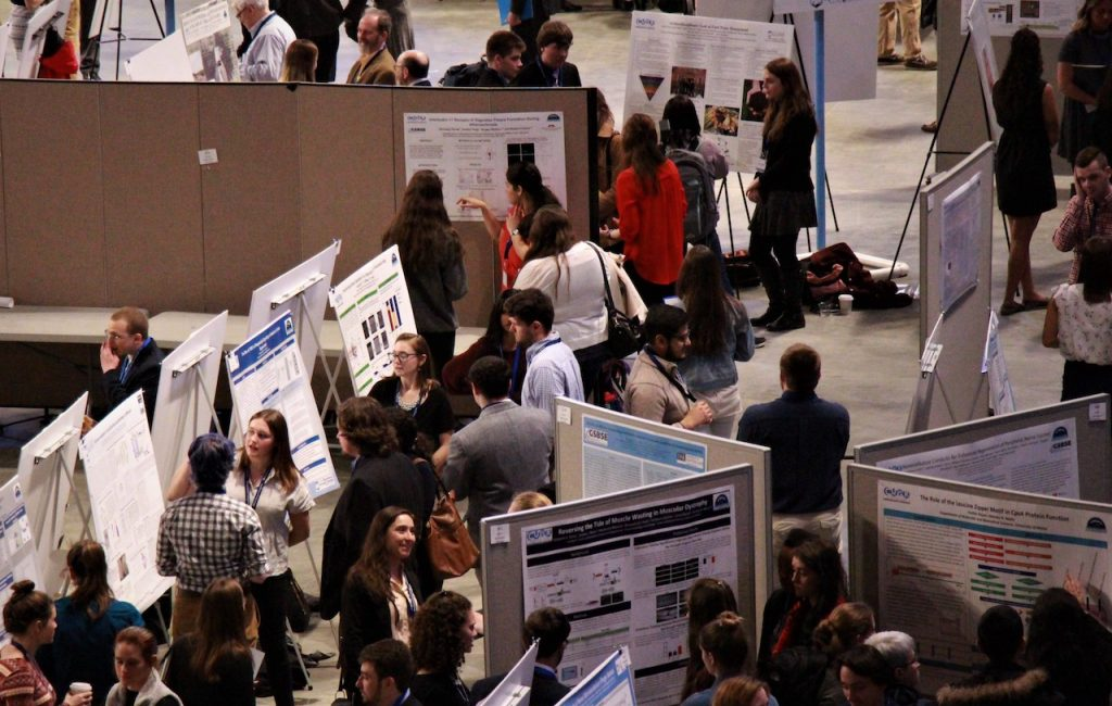 Posters at the Symposium