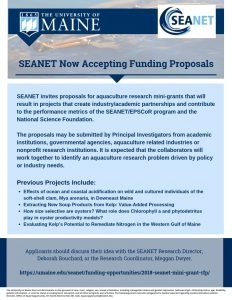 SEANET invites proposals for funding flyer