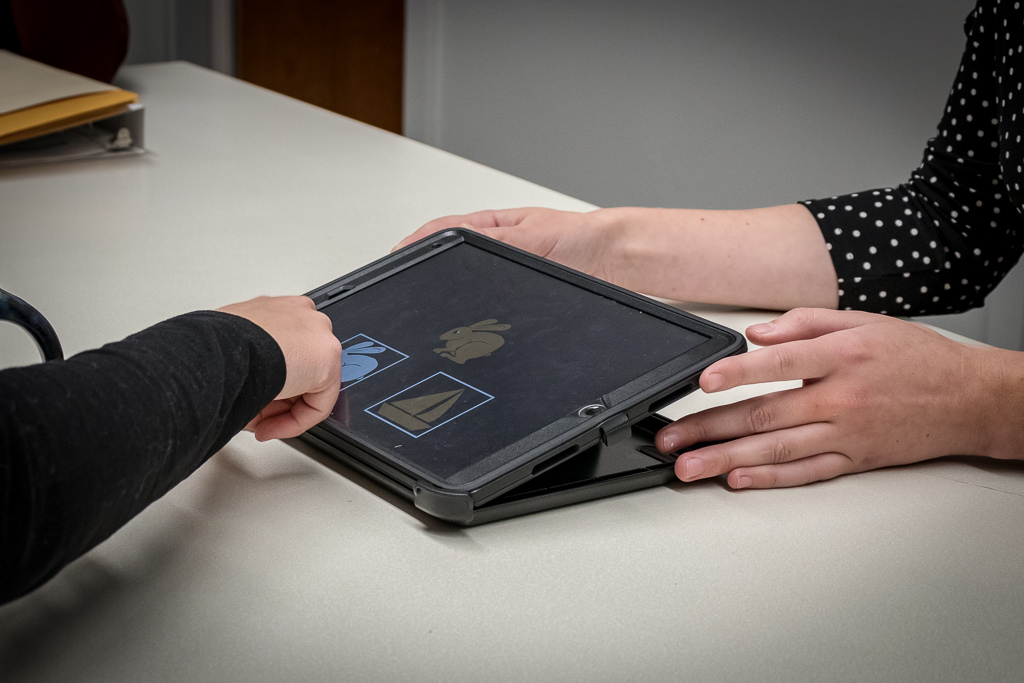The NIH toolbox on a tablet