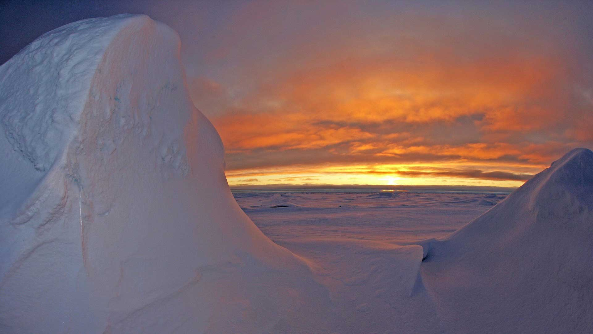 featured image for UMaine Arctic initiative announces inaugural Seed Grant awardees