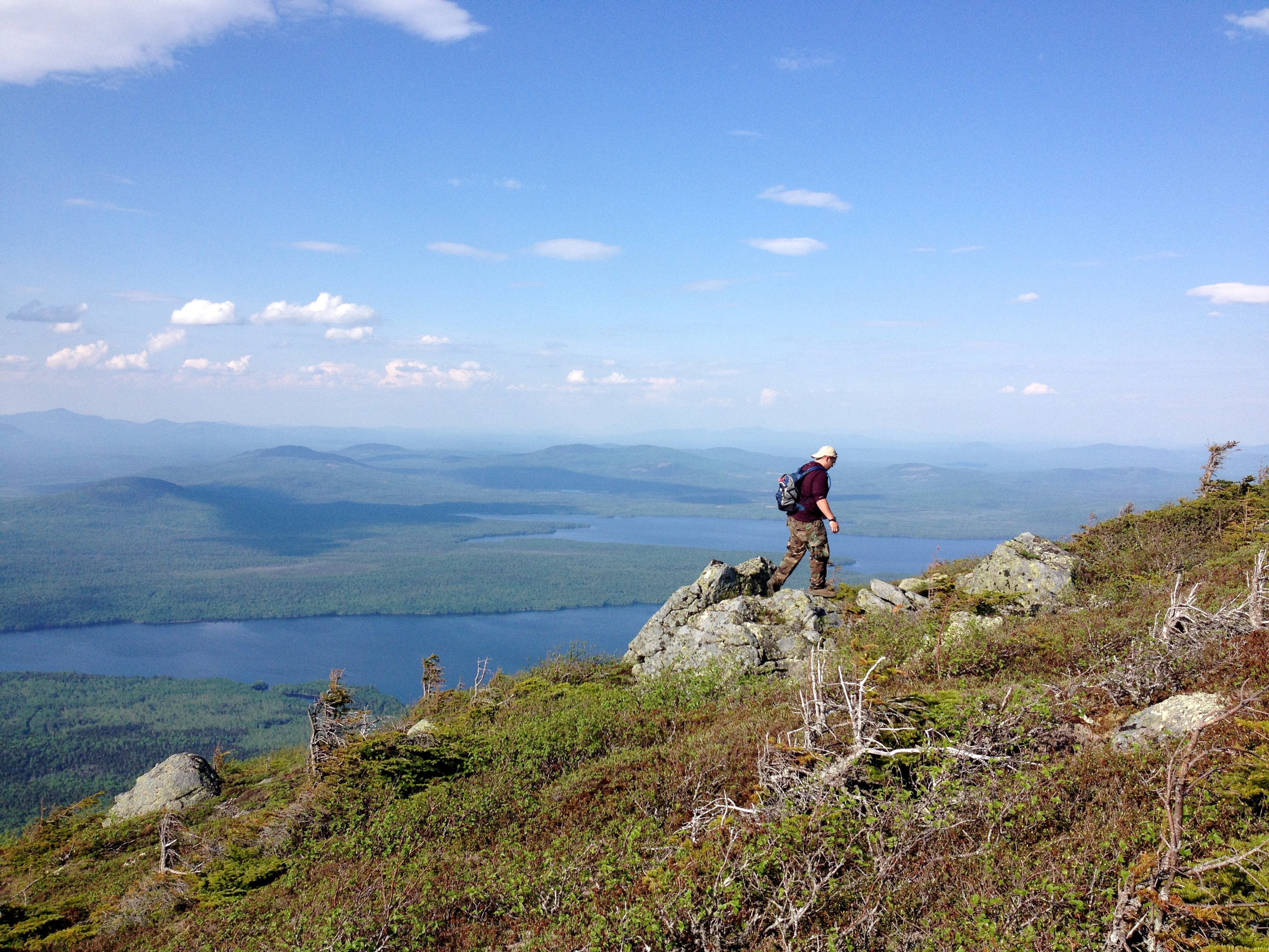 UMaine Conservation Biology Research, Mountaintop
