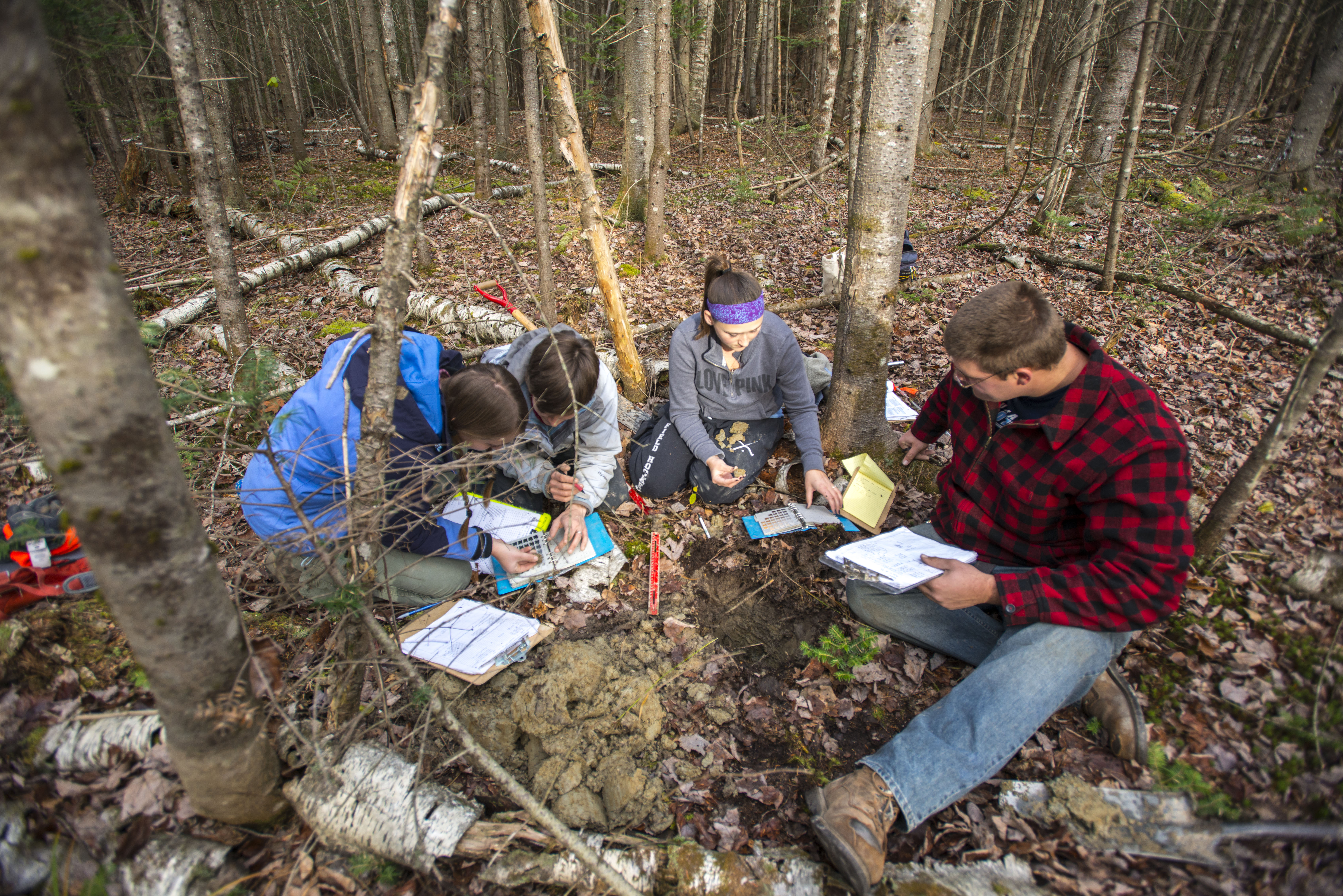 Forest Research, UMaine