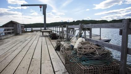 Pier, UMaine Marine Research