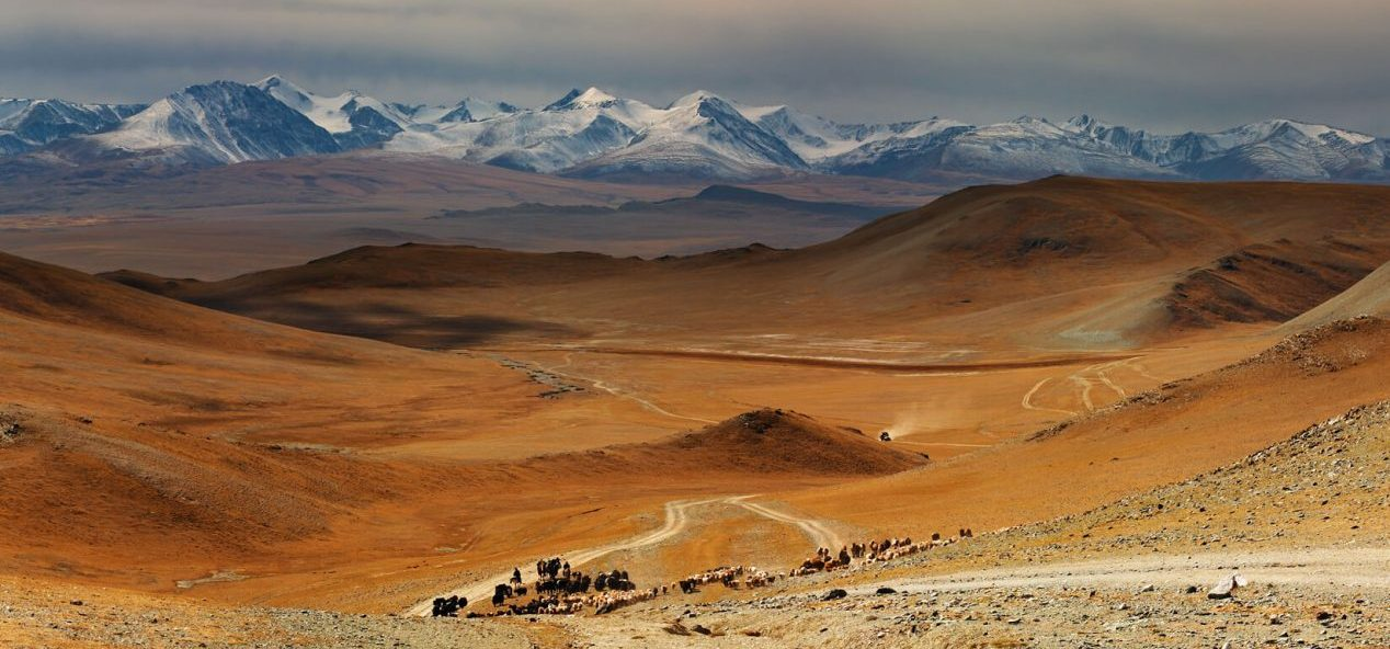 Mongolia-News-feature-low-resolution-1268x716