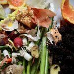 Food Compost