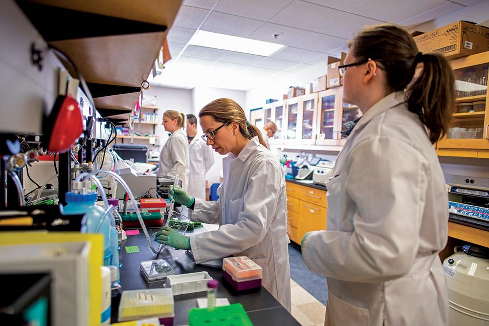 Melissa Maginnis lab