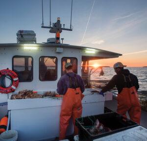lobstering Maine coast