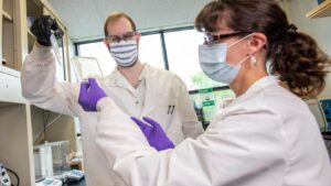 Researchers work in a lab on a water purification project