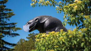 Black bear statue on campus with face mask added
