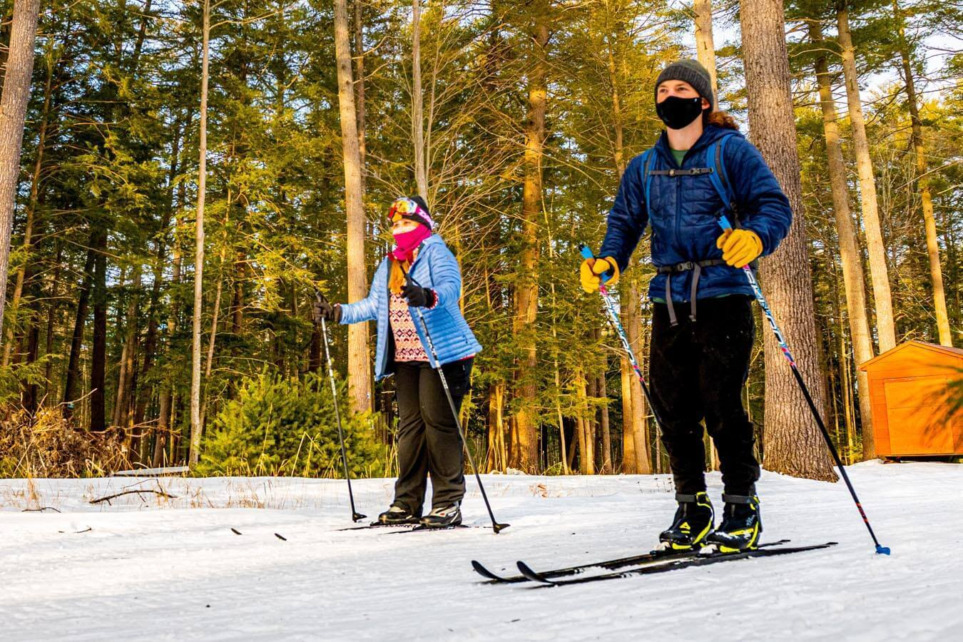 Honors College students cross-country skiing in Demeritt Forest.