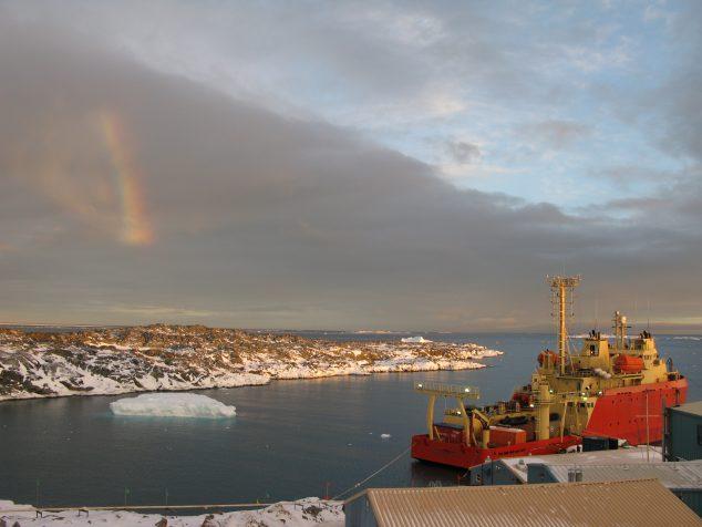 Palmer LMG Rainbow