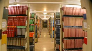 Photo of books in Fogler Library stacks