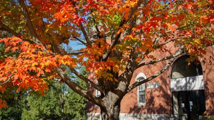 Photo of fall colors outside Fernald Hall