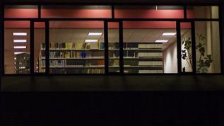 Peering into Fogler Library at night