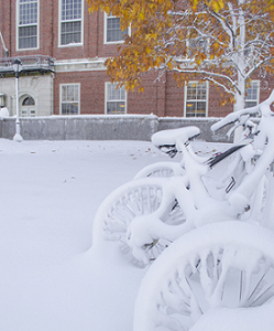 Photo of bikes covered with snow