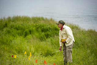 Dr. Alice Kelley conducting research on the Maine coast