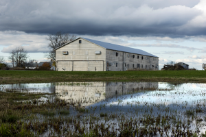 Image of chicken barn with reflection in a vernal pool