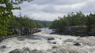 Photo of the West Branch of the Penobscot River in spring