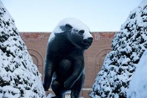 Black Bear statue on campus mall