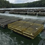 aquaculture rafts