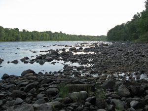 photo of the Penobscot River from Marsh Island