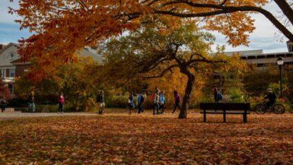UMaine campus