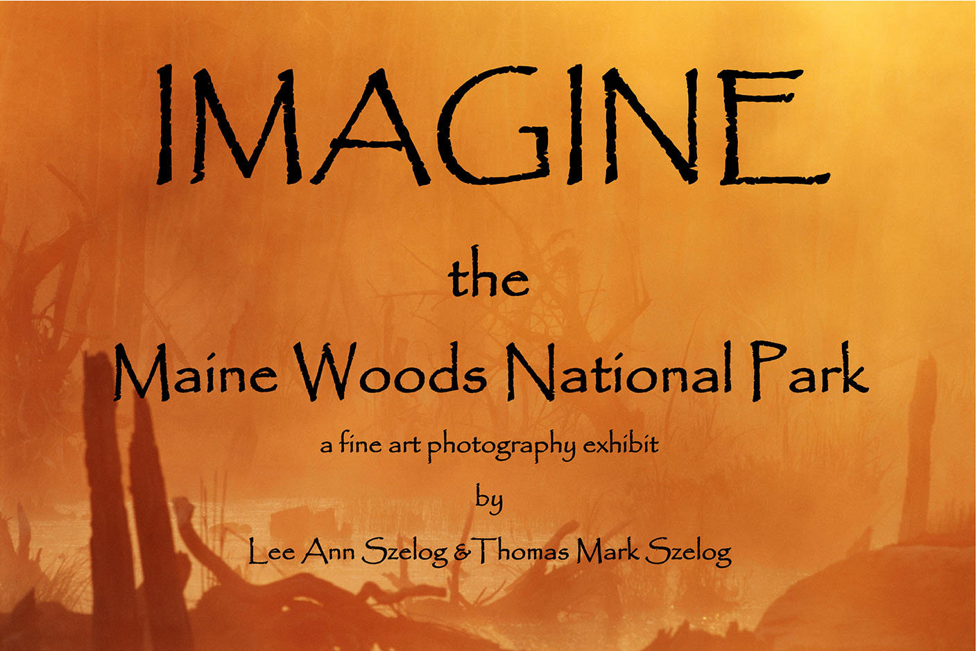 The Maine Woods National Park Photo-Documentation Project