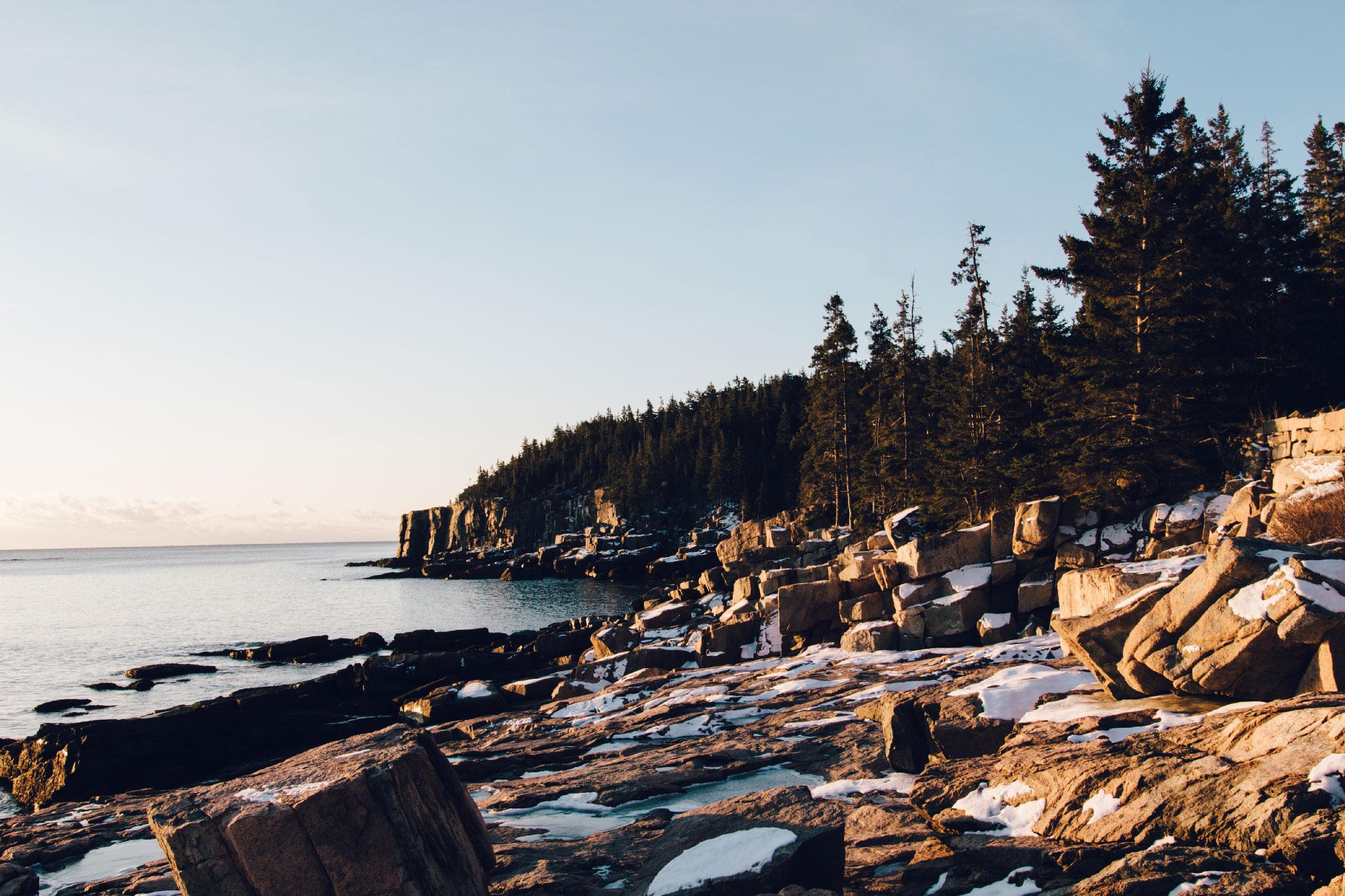 Acadia Photography