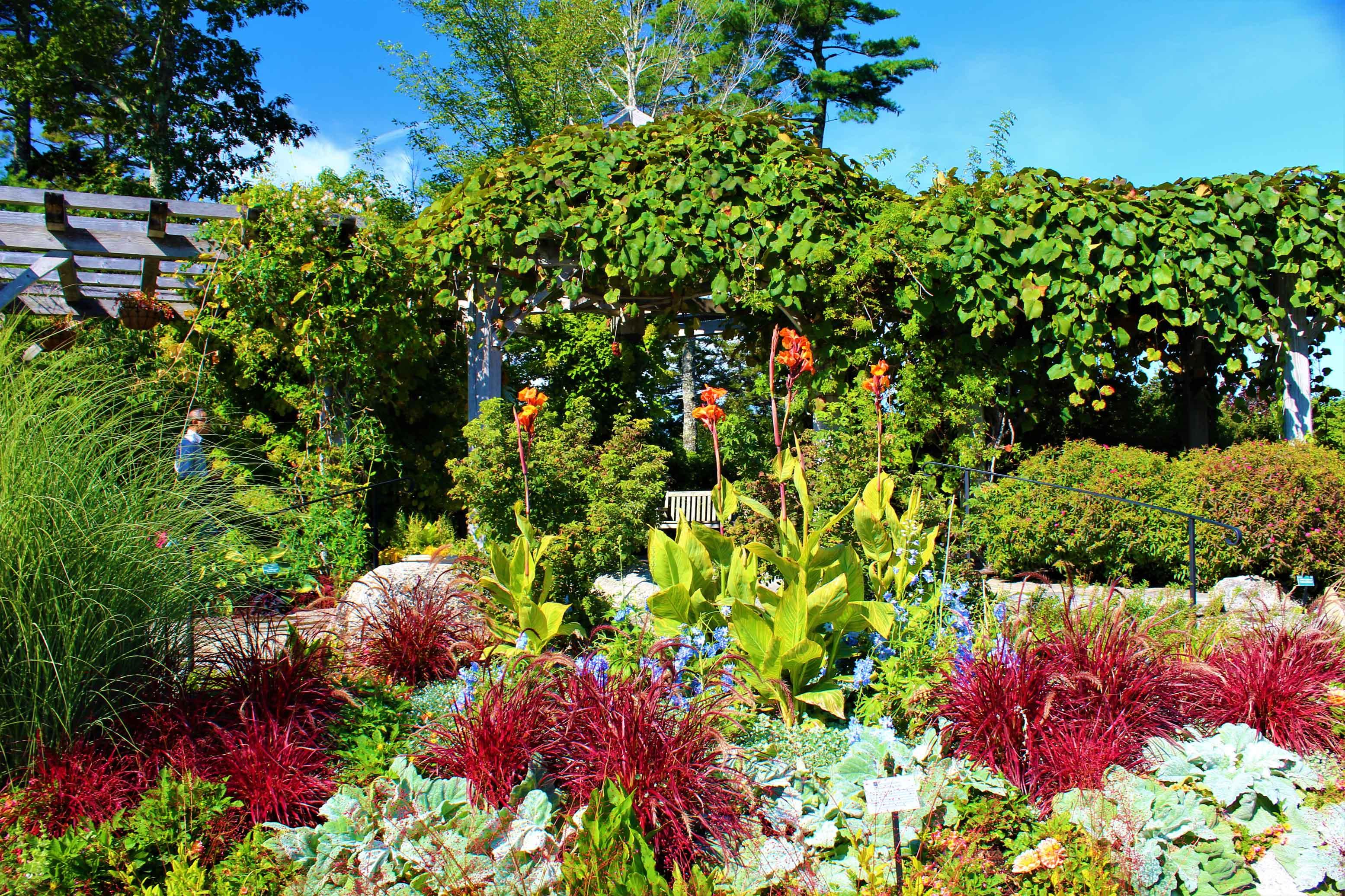 Conservation at Coastal Maine Botanical Gardens