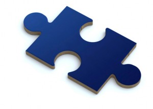 Puzzle Piece from DSS Logo