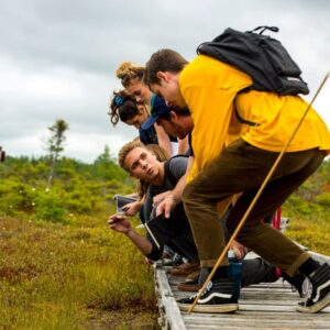 group of ecology and environmental sciences students on bog walk