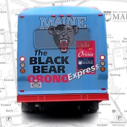 black bear orono express