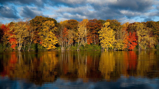 Fall in Orono by Reizer Photography