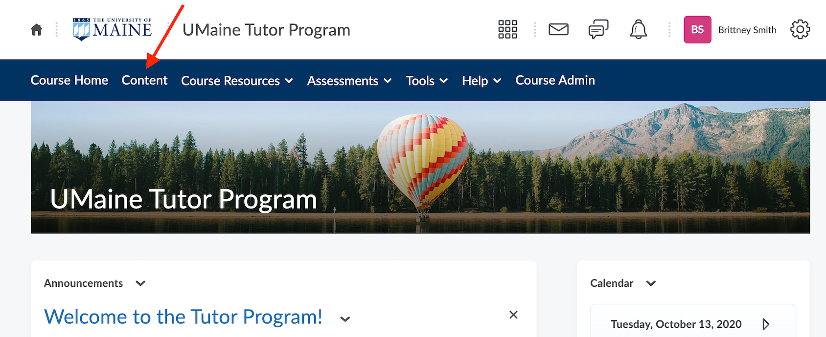 Screen from Brigthspace of where to find the NetTutor link