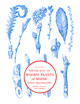 Winter Keys to Woody Plants of Maine cover image