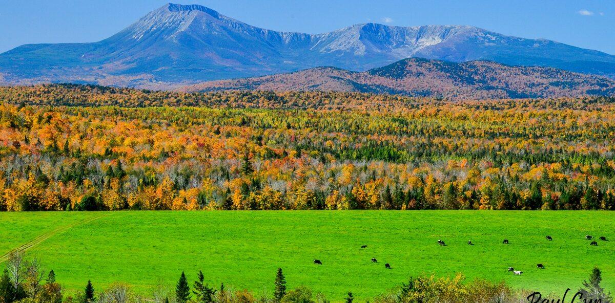 Patten Foliage & Mount Katahdin