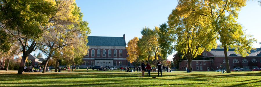 Fogler library and students on the mall