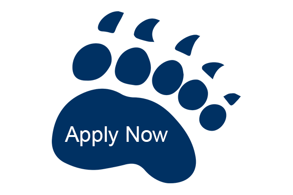 Blue bear paw with Apply Now