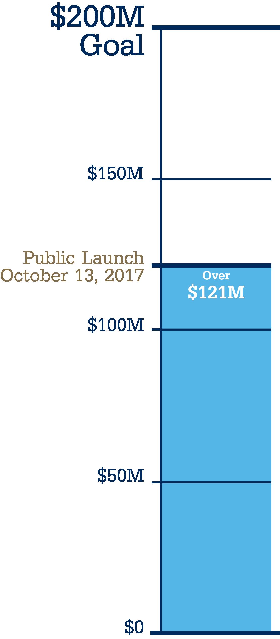Campaign Progress Indicator Graphic