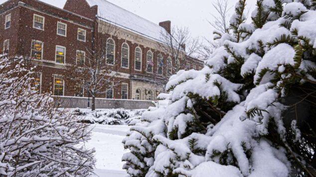 Snowy Fogler Library