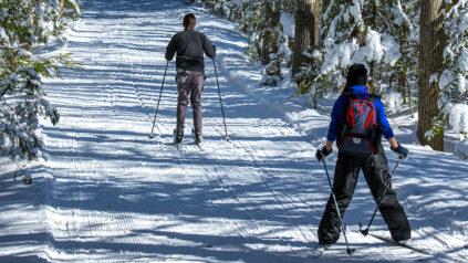 Cross-country skiiers
