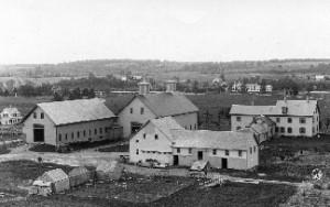 University of Maine campus farm 1890s