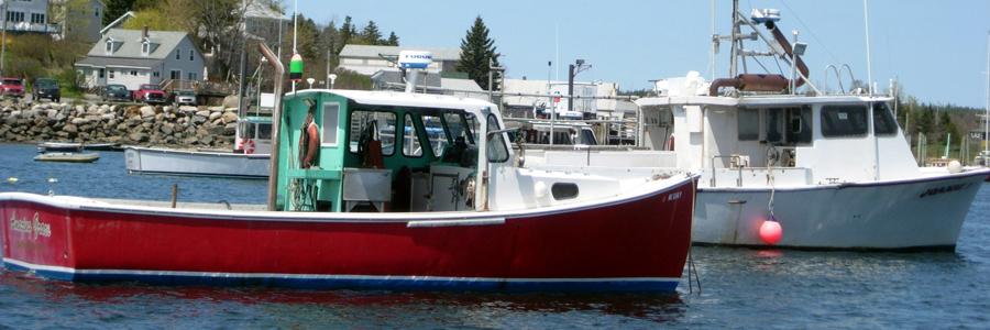 U Maine Lobster Institute Lobster Institute | Un...