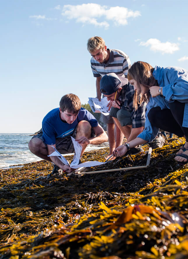 Students learn from an instructor on Maine's coast