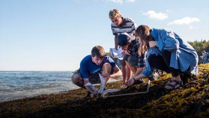 Students on Maine's coast