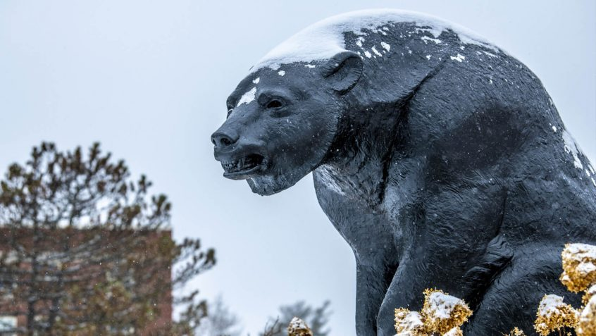 Bear statue in winter