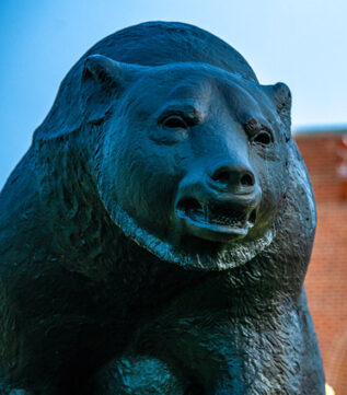 Bear statue on campus